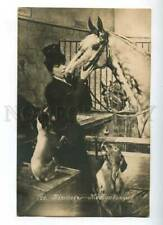187901 Race Donna Horse Jack Russell Terrier Valter Vintage Pc