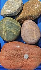 30 lbs Lot #2 Extra Extra Large Xxl Colorful River Rocks Water Feature Landscape