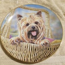 The Danbury Mint Paul Doyle Carry Me Home Plate Yorkshire Terrier #A1278
