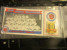 1993 DETROIT TIGERS 1945 World Series Champions Pin Card Tiger Stadium Promo