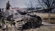 COLOR WWII Photo WW2 German Jagdpanther Knocked Out World War Two Wehrmacht