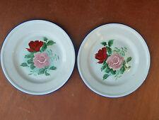 Lot de 2 ancienne assiettes  émaillé, décor de fleur art populaire