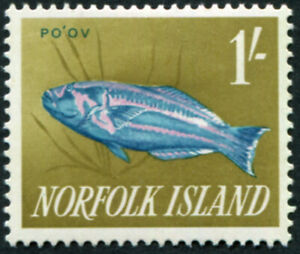 NORFOLK ISLAND 1962 1s blue, pink and yellow-olive SG45 MH FG Surge Wrasse #A05
