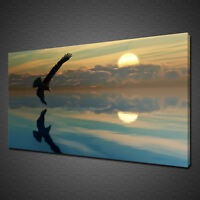 BEAUTIFUL SUNSET FLYING EAGLE RELAXING CALM CANVAS PRINT WALL ART PICTURE PHOTO