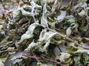 Sun Dried Mint Leaf Organic.  FREE SHIPPING!