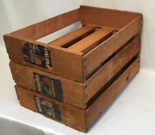 Set of 3 Vintage Wood Wooden Fruit Crate Malena Grown in Mexico 19 x 14 x 4 GUC