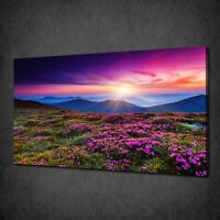 PURPLE FLOWERS IN MOUNTAINS LANDSCAPE WALL ART CANVAS PRINT PICTURE
