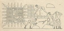 A4041 Soldati egiziani innalzano fortificazioni - Incisione Antica del 1888