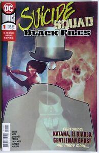 Suicide Squad Black Files #1 - DC Comics - Mike W. Barr - Phillipe Briones