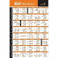 Exercise Ball Poster Laminated - Total Body Workout - Personal Trainer Fitnes...