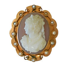 Victorian Gold Hard Stone Cameo Pearl Pin