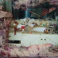 PUSHA T - DAYTONA (VINYL)   VINYL LP NEW+