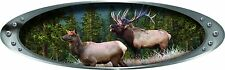"Elk Wildlife Decal 13"" x 4""  1 Decal"