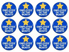 12x Employee Of The Month Award Novelty Blue 25mm / 1 Inch D Pin Button Badges