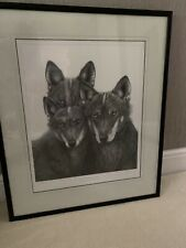 Gary Hodges Iberian  Wolves  Framed Limited Edition Print. RARE...