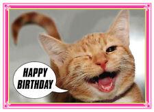 GINGER CAT KITTEN TALKING WINKING HAPPY BIRTHDAY CARD FREE POST 1ST CLASS