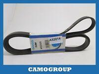 Zahnriemen V-Gerippt Belt 2325MM Dayco Für AUDI A4 A5 A6 A7 Q5 Q7 6PK2325