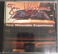 New Miserable Experience Gin Blossoms CD 1992 Vintage