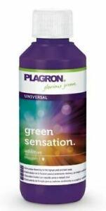 Plagron Green Sensation - 100ml