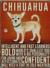 Targa Metallo Vintage Cane Chihuahua - 40 X 30 CM