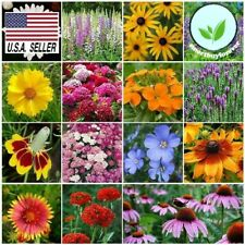500++ Seeds ALL PERENNIAL WILDFLOWER MIX 15 Different Flower  Butterflies Garden