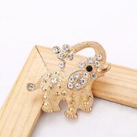 Animal Elephant Crystal Rhinestone Brooch Pin Women Costume Jewelry Gift LD