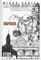 Teenage Mutant Ninja Turtles Micro-Series 1 Raphael 1st Alopex Petersen Variant