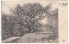 Hampshire; New Forest, Queens Bower Oak PPC, 1904 PMK, To Miss Harris, Wareham