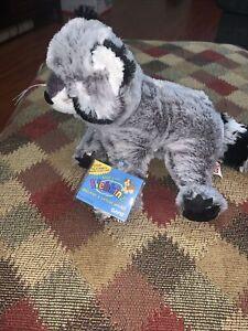 Webkinz Raccoon With Sealed Tags Hm143