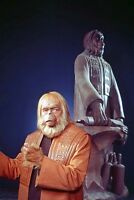 Maurice Evans Planet of the Apes by statue of Caesar 11x17 Mini Poster