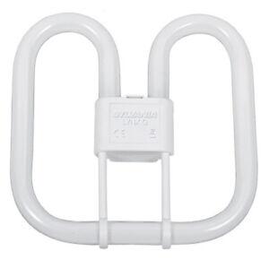 Blanc 840 4000 k blanc froid Lampe Culot GR8 Papillon-JJ BRITESOURCE 2D 16 W /à /économie d/énergie Tube Fluorescent Ampoule 2 broches Standard-Couleur