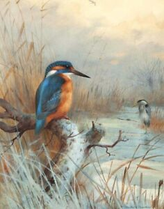 Archibald Thorburn Winter On The River Canvas Print 16 x 20  #3957