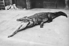 Vintage Gator Girl Photo Bizarre Odd Freaky Strange