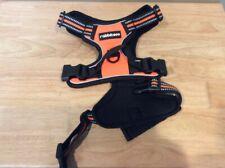 New listing Rabbitgoo No Pull Dog Harness Orange/Black Medium