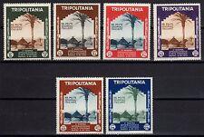 TRIPOLITANIA 1934 Mostra Arte Coloniale a Napoli MH* (CL)