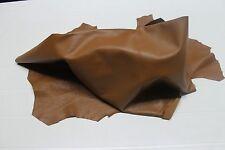 Italian Lambskin leather hide hides skin skins Camel #10154 7sqf