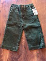 Size 18m green NWT CORDUROY ELASTIC WAIST pants by CHAPS