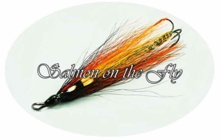 Salmon On The Fly