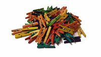 Small Pegs - 2.5cm Mini Coloured Pegs - UK Seller