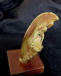 "Bronze Lost Wax  Cast  ""Lobster Claw on Stand""  Decorative Sculpture Fine Art"