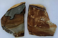 PALOMINO PICTURE JASPER Rough Rock Stone Slabs Cab Cabbing from Oregon