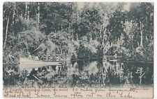 New Zealand; Mahinapua Creek PPC, 1910, By Littlebury, Shows Party in Small Boat