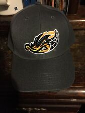Akron Rubber Ducks Hat Cap ADJUSTABLE MiLB Minor League RubberDucks Strapback