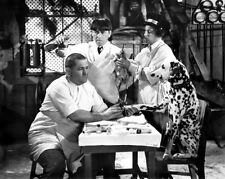 THE THREE STOOGES 8x10 still with Curly and Dalmation MUTS TO YOU -- (b079)
