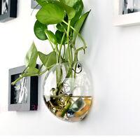 Hanging Glass Flower Planter Vase Terrarium Container Home Garden Ball Decor jd