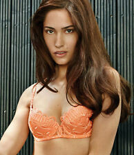 NWT WACOAL Melodie Lace PUSHUP Balconette Bra 32DD Cantelope WE102002 Retails 88