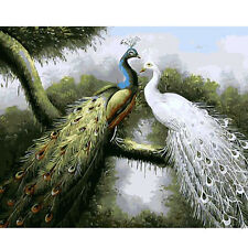 Paint By Number Kit Peacocks Draw DIY Picture Decor Art 40x50cm 16x20in Canvas