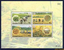 1999 THAILAND JASMIN RICE THAI FARMER STAMP SOUVENIR SHEET S#1855a MNH PERF
