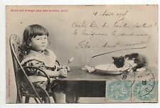 Animal CHAT cat cats carte N° 2 chaton et enfant carte Bergeret