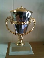 "8"" Gold & Silver Cup Trophy Award -Free Engraving"
